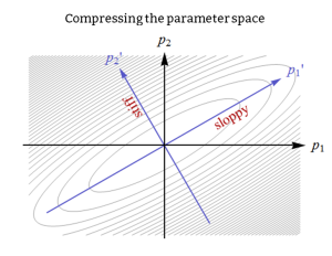 Parameter space compression. The parameters reduce to a set of stiff and sloppy parameters that respectively determine the behavior or are irrelevant.