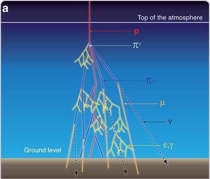 Cosmic ray cascade
