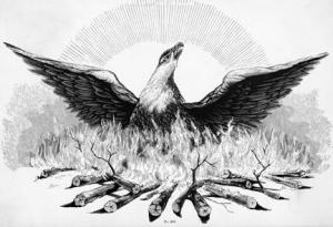 Figure 6: The phoenix may be a mythical bird, but real-life organisms have the ability to arise anew from the ashes.  Figure from from http://media.swarthmore.edu/bulletin/?p=117