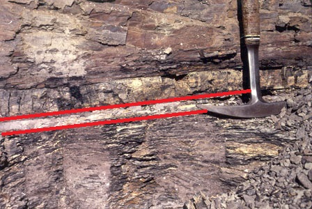 Proof of a colossal asteroid crash is buried in this seemingly mundane rock.  The K-Pg boundary is between the red lines.  Image from wikepedia.com