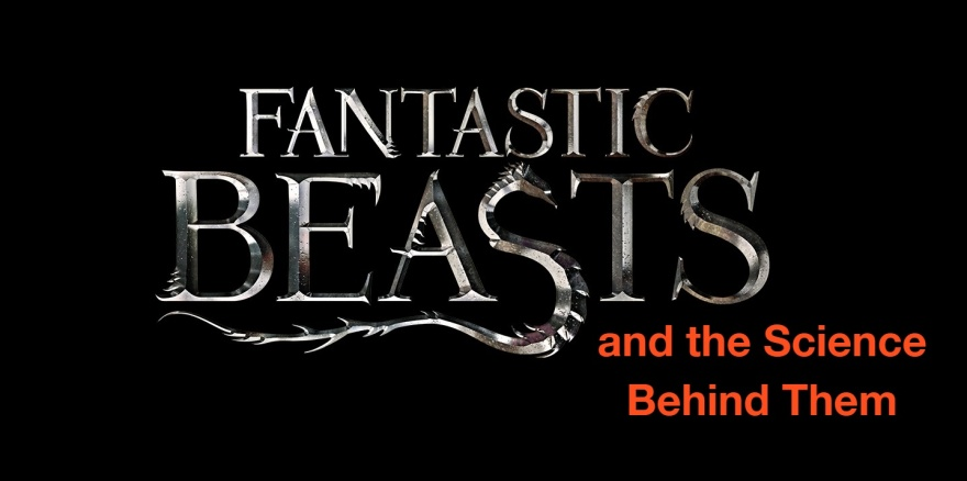 fantastic-beasts-science