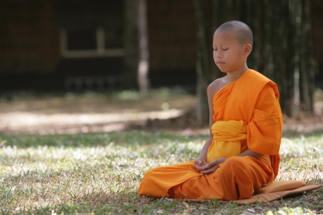 novice_meditating_in_forest